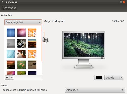 Ubuntu 11.10 - Görünüm