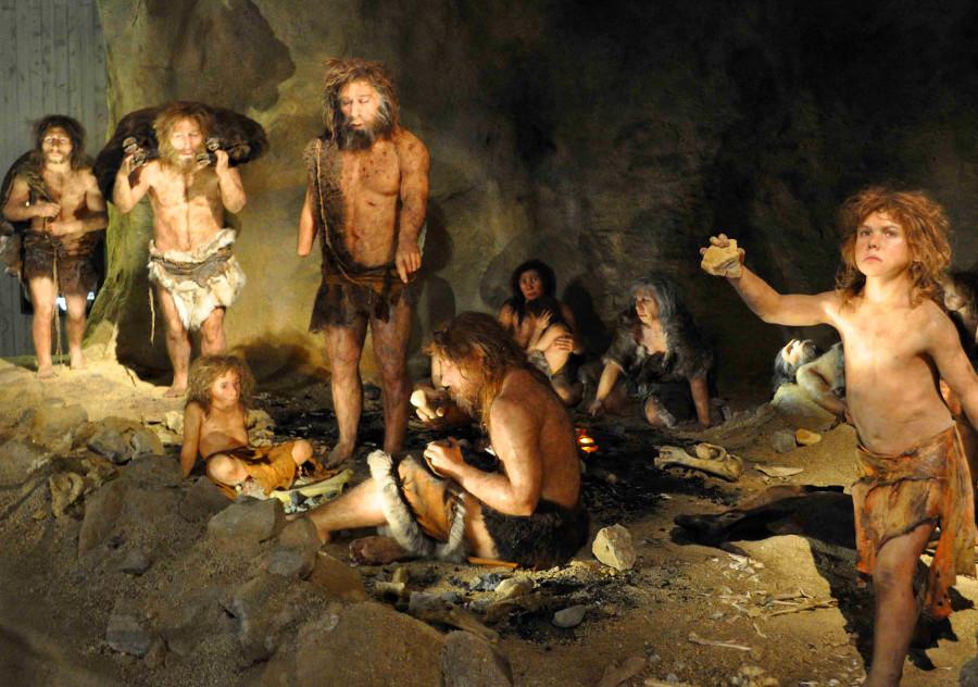 Sapiens Neanderthals