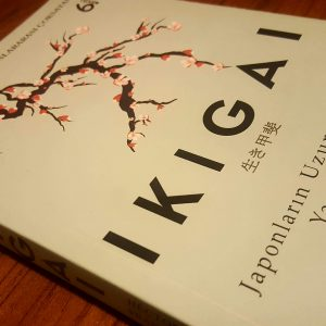 Ikigai - Japonların uzun ve mutlu yaşam sırrı (Hector Garcia, Francesc Miralles - Çeviren: Meltem Uzun)